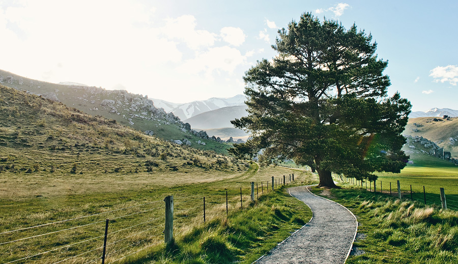 New Zealand Landscape Photos Lord of the Rings 66