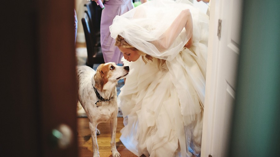 georgetown and washington dc wedding photographer artistic image 64