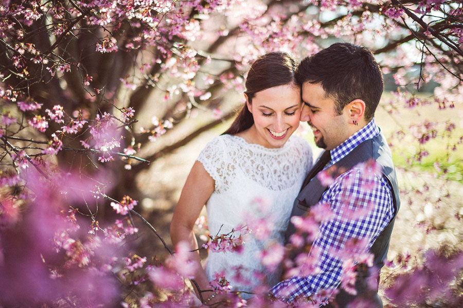 bride and groom in cherry blossoms during washington dc elopement
