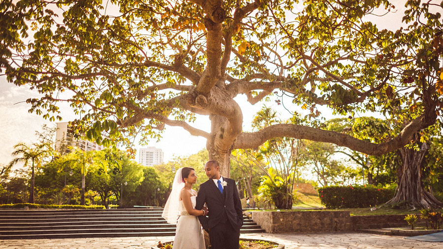 tree poark san juan destination wedding