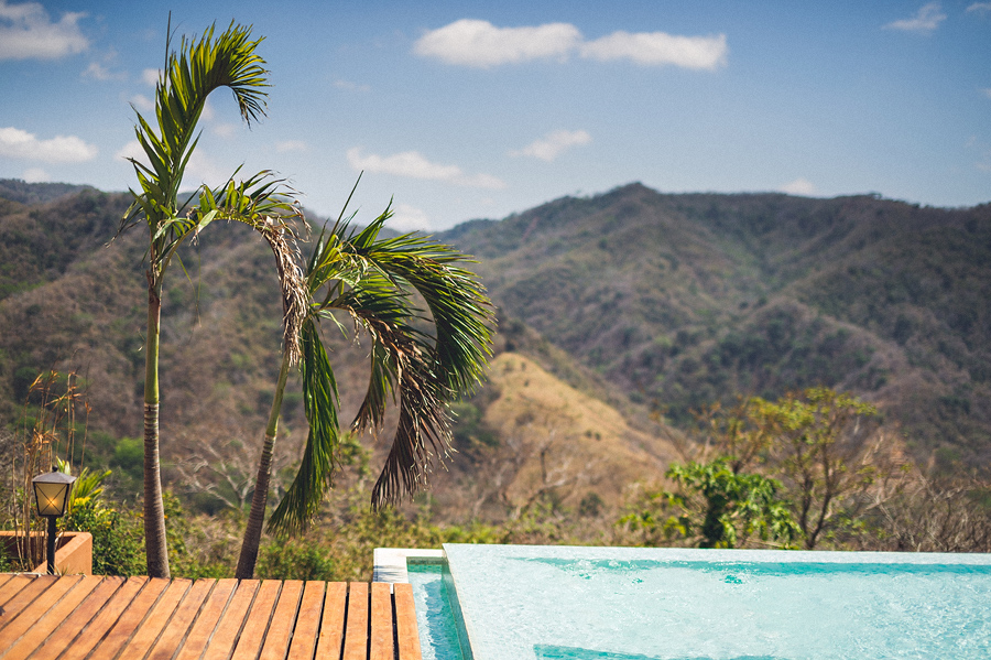 storyboard005 infinitiy pool and palm tree
