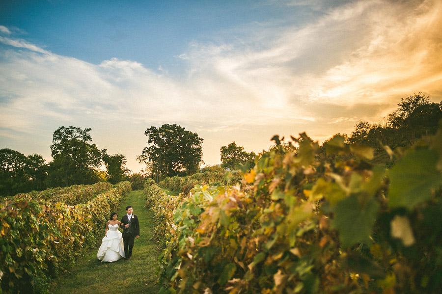 bluemont vineyard wedding in grape vines