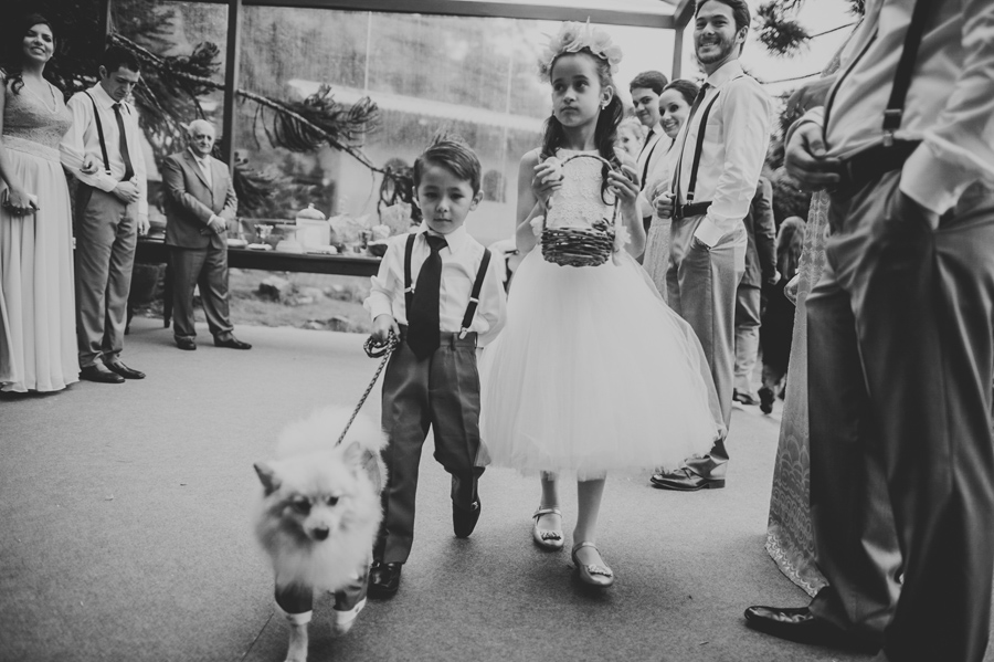 flower girl and dog walking down aisle