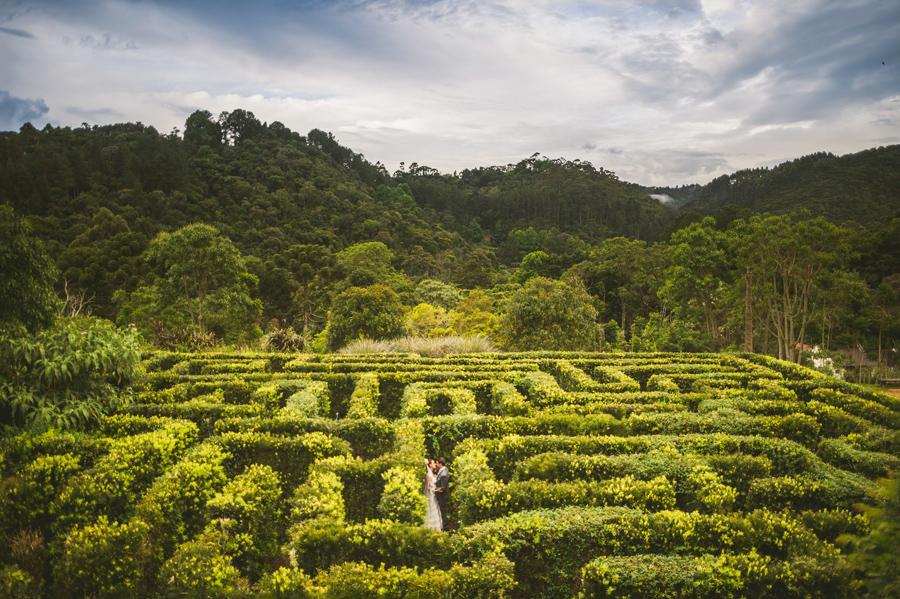 wedding portraits in maze of brazil wedding