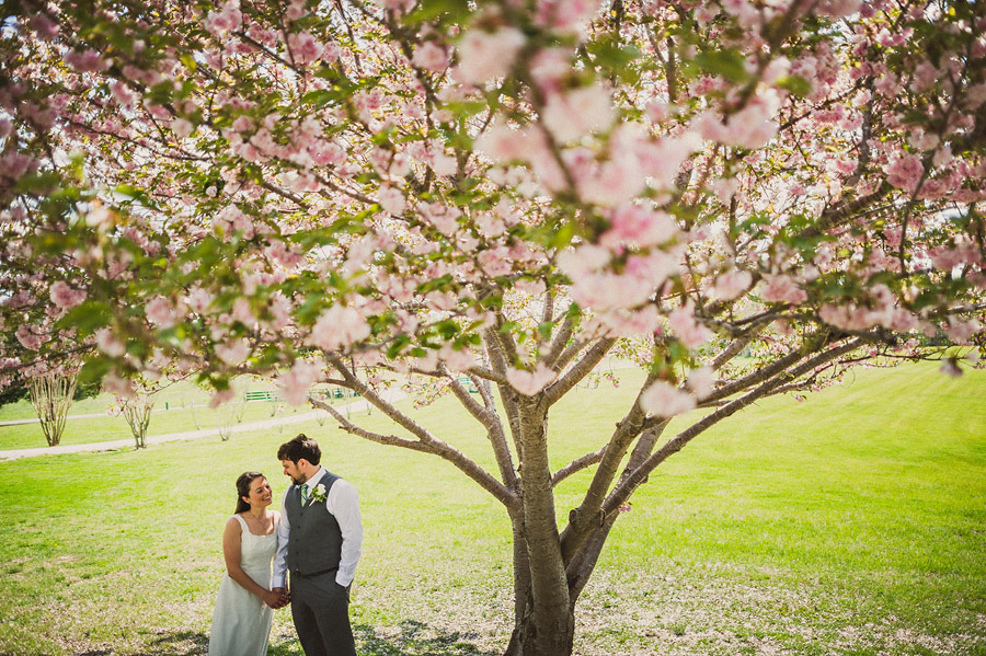 cherry blossom wedding portrait