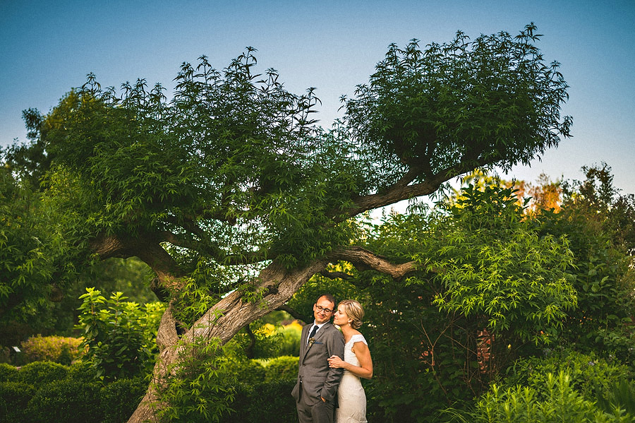cool tree outdoors for bridal portraits