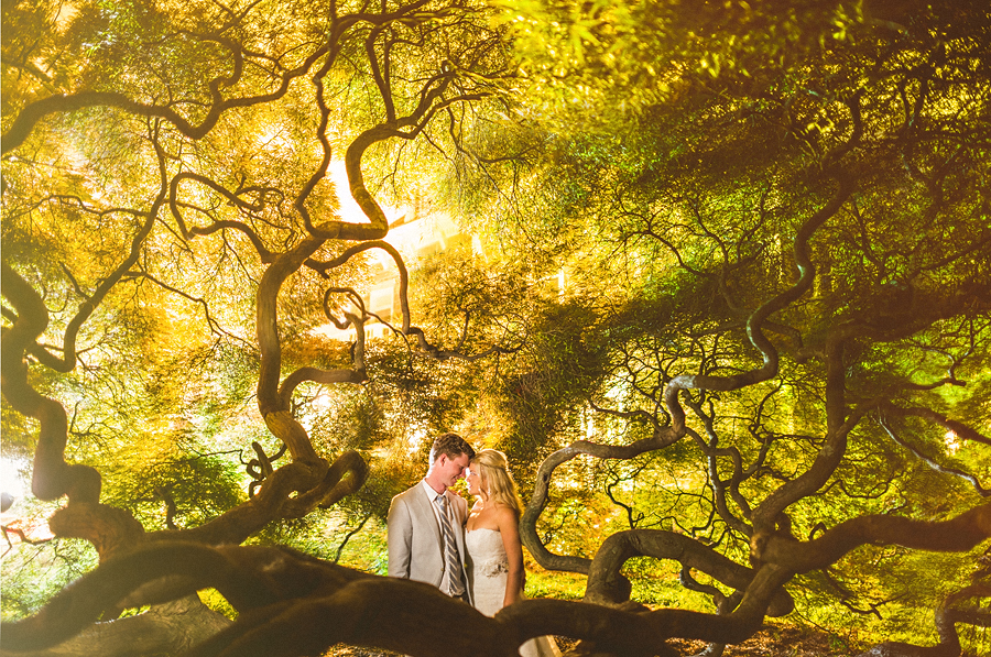 cylburn arboretum wedding night portrait of bride and groom in a huge maple tree at