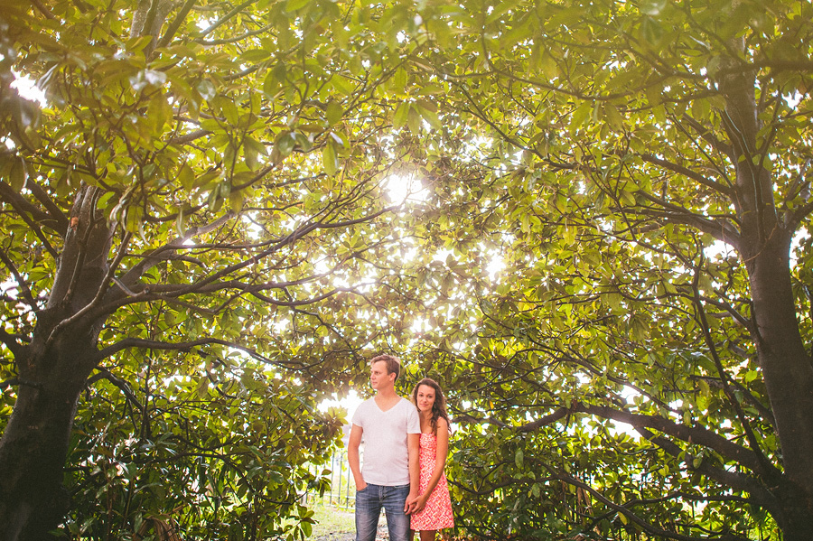 magnolia trees for engagement photos