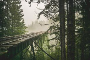 The PNW Bridge