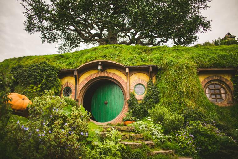 33 leica m-p airbnb trip through new zealand