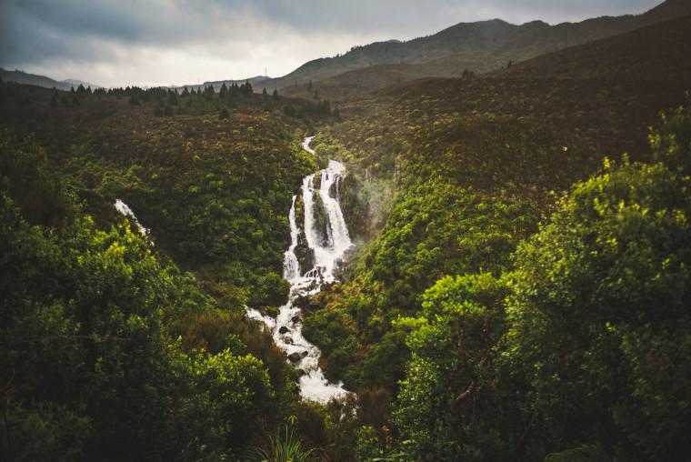 46 leica m-p airbnb trip through new zealand