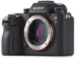 sony a9 mirrorless camera review